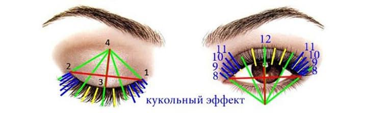 Схема кукольного эффекта наращивания ресниц
