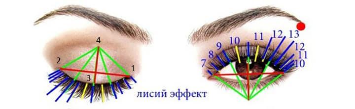 Схема лисьего эффекта наращивания ресниц