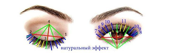 Схема натурального эффекта наращивания ресниц